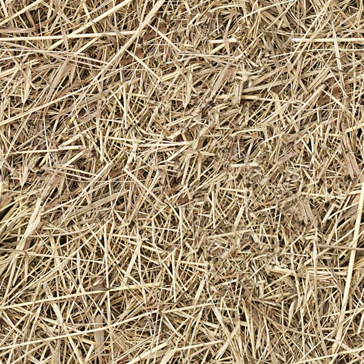 hay straw seamless texture